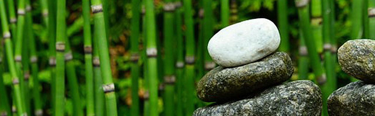 formation-reiki-angers